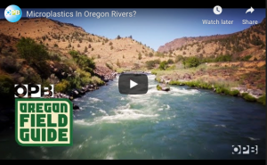 Screen Shot: OPB Microplastics in Oregon Rivers?