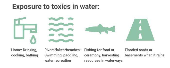 Toxics in Water - Exposure Pathways graphic
