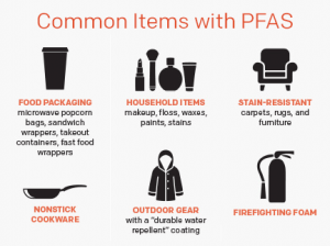 Infographic showing common items with PFAS