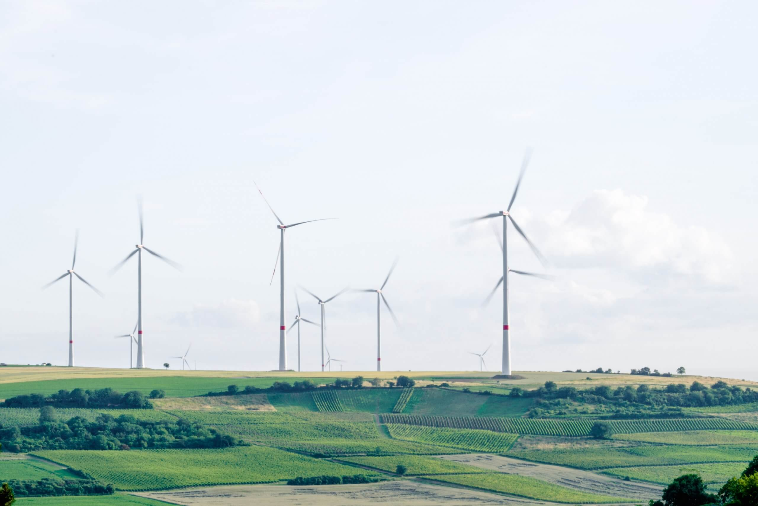 Windmills over green terrain