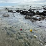 Ceremonial flowers in ocean waters